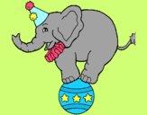 Elefante em cima de uma bola