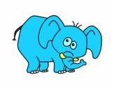 Elefante envergonhado