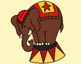 Desenho Elefante a actuar pintado por vanalb