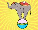 Desenho Elefante equilibrista pintado por Craudia