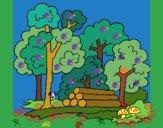 Desenho Bosque pintado por ceciliaz