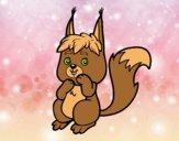 Um pequeno esquilo