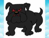 Cão Bulldog