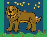 Desenho Cão pigmento pintado por ceciliaz
