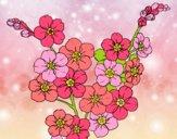 Desenho Flor de cerejeira pintado por Sillvana