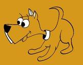 Cachorro III