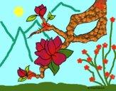 Desenho Flor de amendoeira pintado por ceciliaz