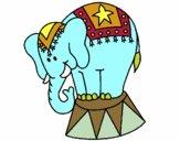 Desenho Elefante a actuar pintado por isalu