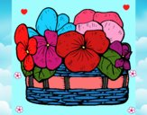 Cesta de flores 12