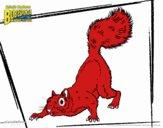Bob Esponja - A Esquilo para o ataque