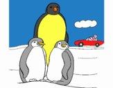 Familia pinguins