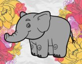 Um pequeno elefante