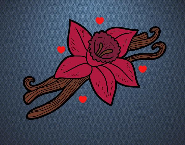 Desenho Baunilha pintado por Anna_blogs