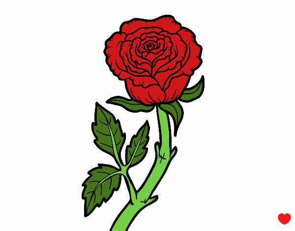 Desenho Rosa selvagem pintado por luzinda