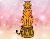 Desenho Tigre do circo pintado por luanah