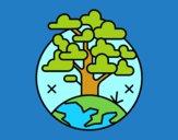 Círculo árvore
