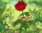 Desenho Uma rosa pintado por Luh22
