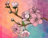 Desenho Filial da cereja pintado por LadyMcm
