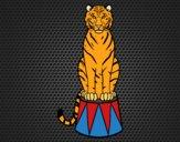Desenho Tigre do circo pintado por LadyMcm