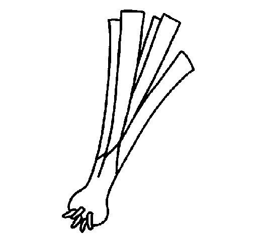 desenho de aipo para colorir