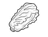 Desenho de Alface romana para colorear