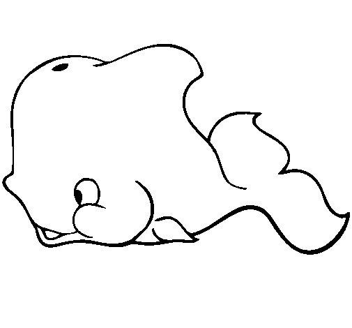 Desenho de Baleia para Colorir