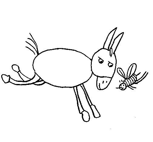 Desenho de Burro e abelha para Colorir