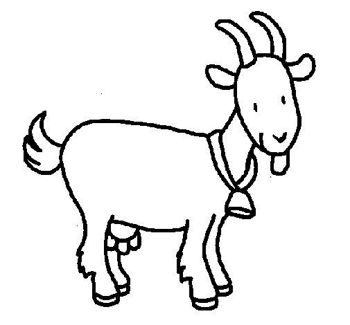 Desenho de Cabra para Colorir
