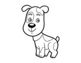 Dibujo de Cão doméstico