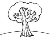 Desenho de Carvalho para colorear