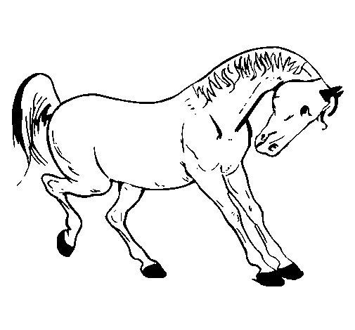 Desenho De Cavalo A Dan 231 Ar Para Colorir Colorir Com