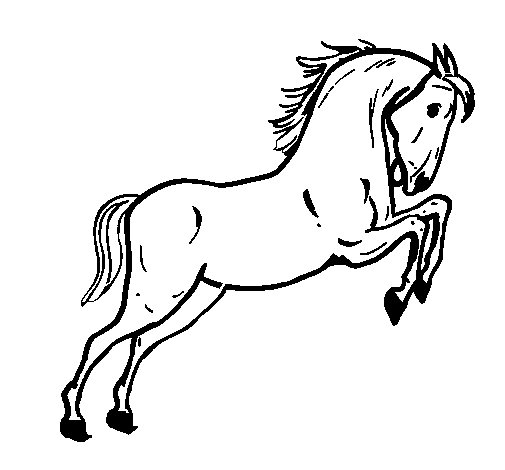Desenho de cavalo a saltar para colorir for Disegni di cavalli da stampare