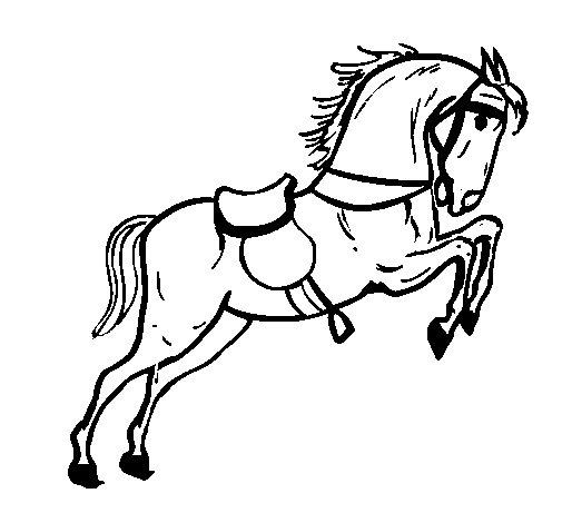 Desenho de Cavalo com sela a saltar para Colorir