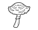 Desenho de Cogumelo lepiota cristata para colorear