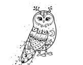 Dibujo de Coruja do inverno