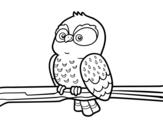 Dibujo de Coruja em um ramo