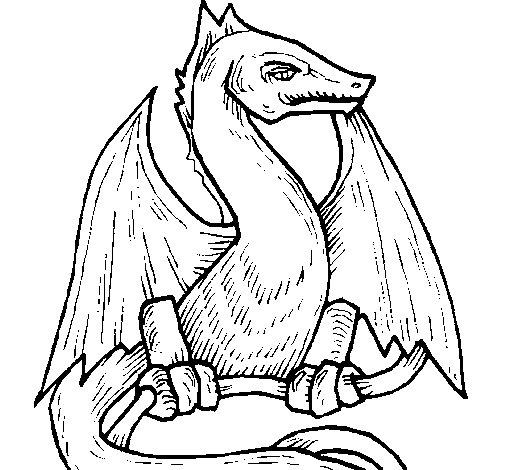 Desenho de Dragão  2 para Colorir