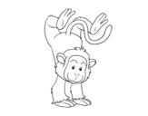 Dibujo de Equilibrista macaco