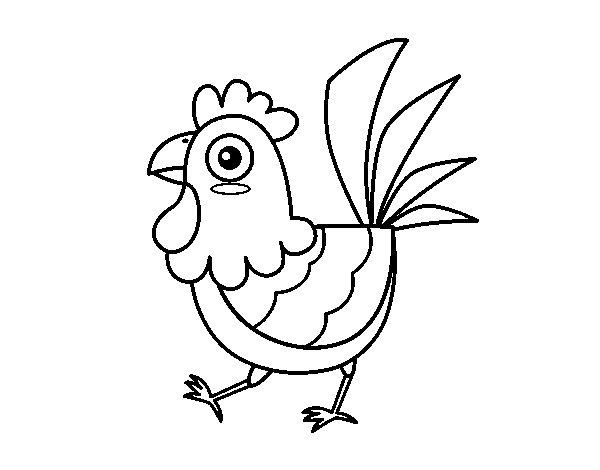 Gallos Coloridos Dibujos Animados: Desenho De Galinha De Granja Para Colorir