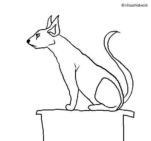 Desenho de Gato egípcio II para Colorir