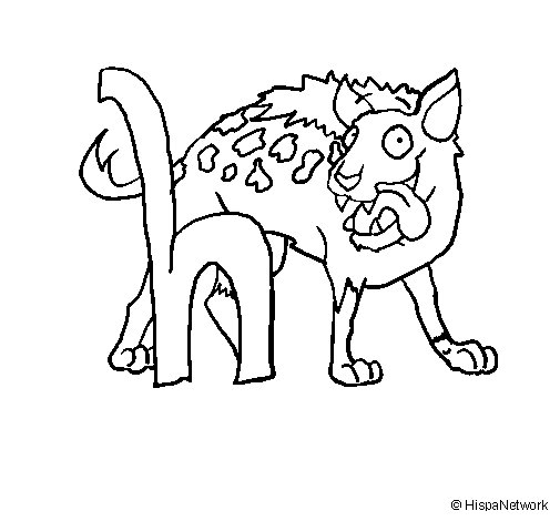 Desenho de Hiena para Colorir