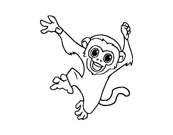Desenho De Macaco-prego Bebê Para Colorir