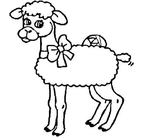 Desenho de Ovelha  para Colorir