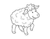 Desenho de Ovelha comum para colorear
