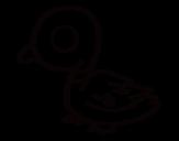Desenho de Pato de rio para colorear