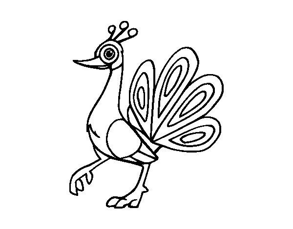 Desenho de Pavão-indiano para Colorir - Colorir.com