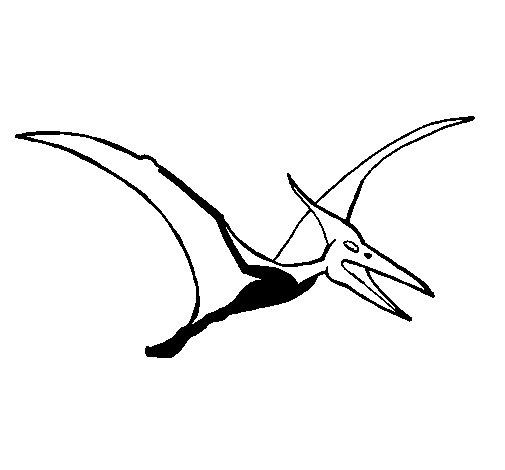 Desenho de Pterodáctilo para Colorir