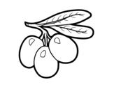 Desenho de Ramo azeitonas para colorear