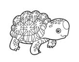 Desenho de Tartaruga estrelada indiana para colorear