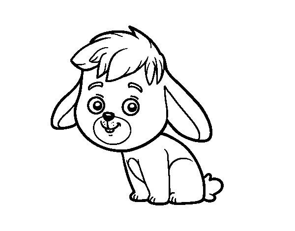 Desenho de Um coelho de campo para Colorir